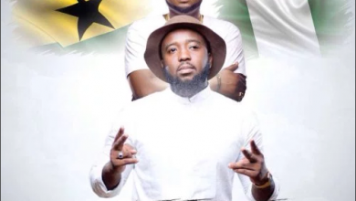 Photo of Trigmatic – Fire ft. Skales