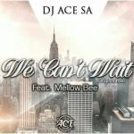 DJ Ace SA – We Can't Wait ft. Mellow Bee