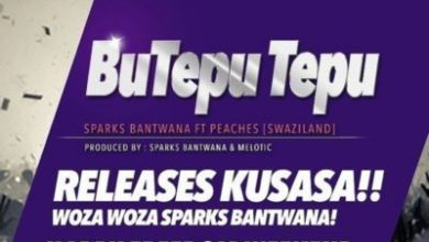 Photo of Sparks Bantwana – BuTepu Tepu ft. Peaches