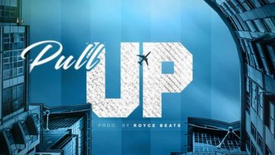 Photo of B3nchMarQ – Pull Up