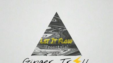 Photo of Ginger Trill – Let It Flow Freestyle