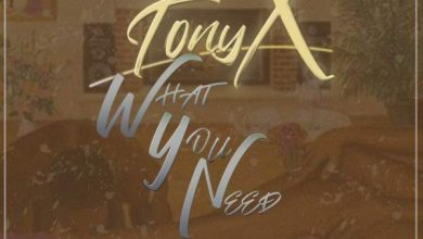 Photo of Tony X – What You Need Ft. Dee XCLSV & Manu Worldstar
