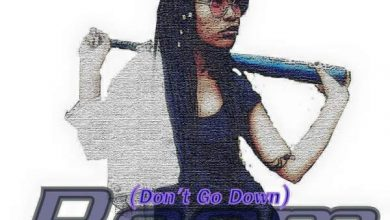 Photo of Pastor Snow – Boom (Don't go Down) Ft. Reebah