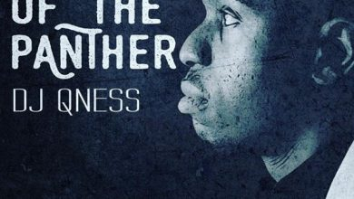 Photo of DJ Qness – Chants Of The Panther EP