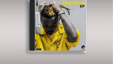 Photo of P.A Fakaloice – ZungliShandis EP