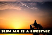 Photo of DJ Ace – Slow Jam Is A LifeStyle (AmaPiano Mix)