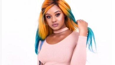 Photo of Of Public Trust and Babes Wodumo's Endless Excuses