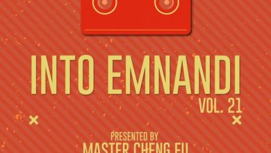 Photo of Master Cheng Fu – Into Emnandi Vol 21 Mix