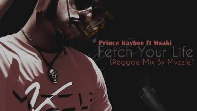 Photo of Prince Kaybee Ft. Msaki – Fetch Your Life (Reggae Mix By Mvzzle)
