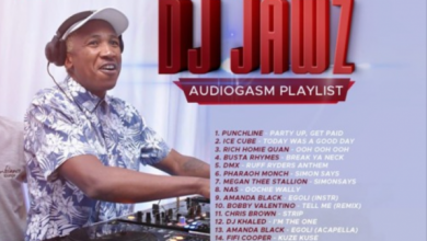 Photo of DJ Jawz – The No.1 Party DJ Mix #23 (Audiogasm Playlist)