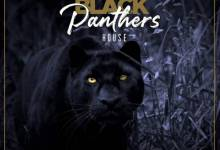 Photo of Pro-Tee x Biblos – Black Panther