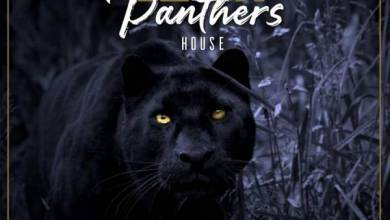 Photo of Pro-Tee x Biblos – Black Panthers House Album