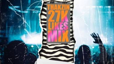 Photo of Thakzin – 27K Likes Mix