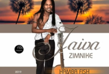 Photo of Jaiva Zimnike – Hamba Fish