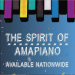 Various Artists – The Spirit of Amapiano Album