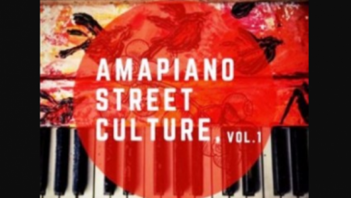 Photo of Entity Musiq & Lil'mo – Amapiano Street Culture Vol 1 Album