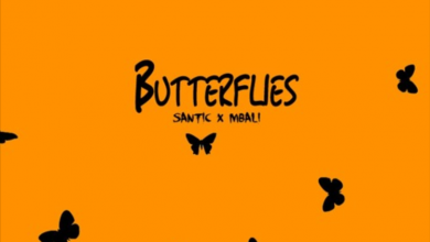 Photo of Santic – Butterflies ft. Mbali