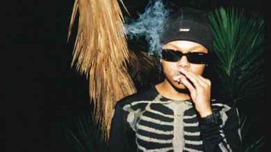 Photo of A-Reece – Nobody Is Safe