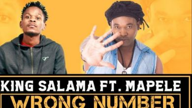 Photo of King Salama – Wrong Number ft. Mapele