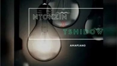 Photo of Ntokzin x Tshidiso x Vibe x Dzedze – Ama lights (Vocal Mix)