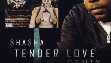 Photo of Sha Sha – Tender Love (King Matalic SA Remix)