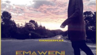Photo of DangerFlex – Emaweni
