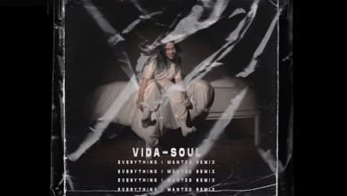 Photo of Billie Eilish – Everything I Wanted (Vida-Soul Remix)
