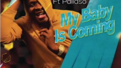 Photo of Dr Malinga – My Baby Is Coming ft. Pallaso