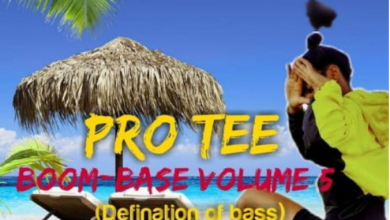 Photo of Pro-Tee – Ultraselection 10 (Road To Boom-base Vol 5)