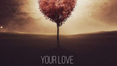 Photo of DJ Ace – Your Love