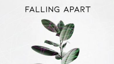 Photo of InQfive – Falling Apart