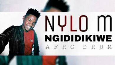 Photo of Nylo M – Ngididikiwe (Afro Drum)