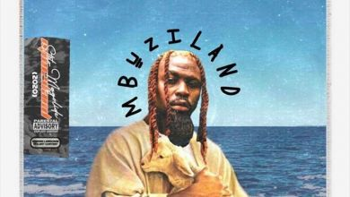 Photo of Stilo Magolide – Mbuzi In The Water