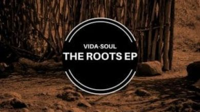 Photo of Vida-Soul – The Roots EP